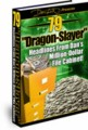 79 Dragon Slayer Headlines Personal Use Ebook