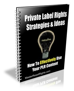 Private Label Rights Strategies  Ideas Give Away Rights Ebook