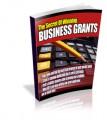 The Secrets Of Winning Business Grants PLR Ebook