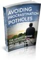 Avoiding Procrastination Potholes MRR Ebook