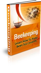Beekeeping Plr Ebook