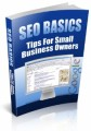 SEO Basics - Tips For Small Business Owners Plr Ebook
