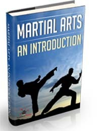Martial Arts An Introduction MRR Ebook