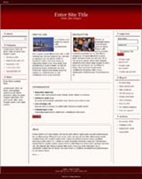 Responsive Magazine Style Template 1 PLR Template