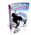 Forex Trading Strategies PLR Ebook