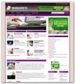 Online Paid Surveys Niche Blog PLR Template