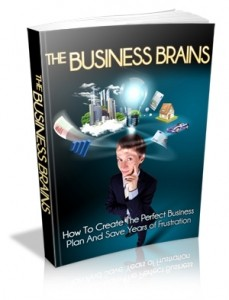 The Business Brains Mrr Ebook