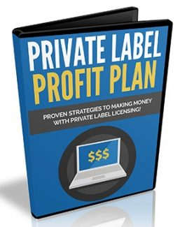 Private Label Profit Plan PLR Ebook With Video