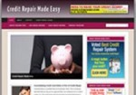 Credit Repair Niche Blog Personal Use Template With Video