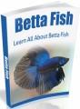 Betta Fish MRR Ebook
