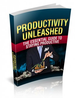 Productivity Unleashed MRR Ebook