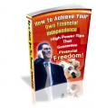 How To Achieve Your Own Financial Independence PLR Ebook