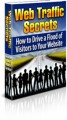 Web Traffic Secrets MRR Ebook