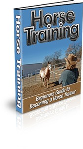 Horse Training Plr Ebook