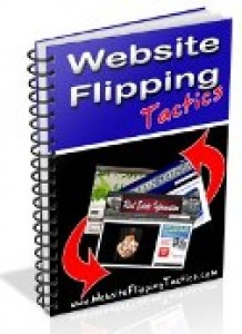 Website Flipping Tactics Mrr Ebook