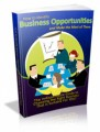 How To Identify Business Opportunities MRR Ebook