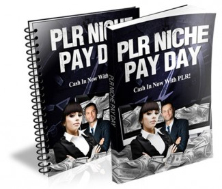 Plr Niche Pay Day Personal Use Ebook