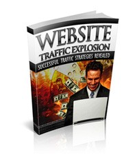 Website Traffic Explosion PLR Ebook