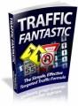 Traffic Fantastic Plr Ebook