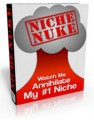 Niche Nuke Personal Use Ebook