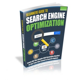 Beginners Guide To Search Engine Optimization Resale Rights Ebook