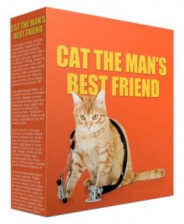 Cat As A Man's Best Friend PLR Article