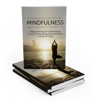 Mindfulness MRR Ebook