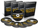 Traffic Excellence Personal Use Video