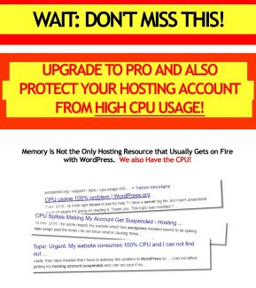 Wp On Fire Pro Personal Use Software