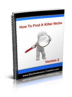 How To Find A Killer Niche V2 Plr Ebook