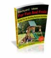 Back Yard Ideas Mrr Ebook