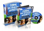 Curing Dog Separation Anxiety Plr Ebook With Audio & Video