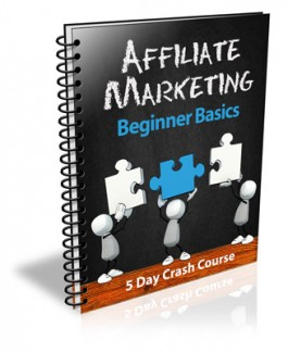 Affiliate Marketing Beginner Basics PLR Autoresponder Messages