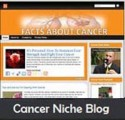 Cancer Niche Blog Personal Use Template