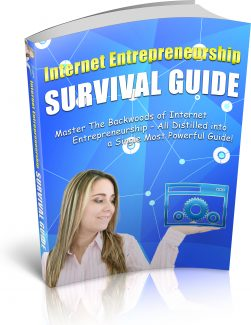 Internet Survival Guide PLR Ebook