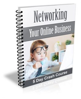 Networking Your Online Business PLR Autoresponder Messages