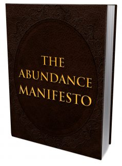The Abundance Manifesto MRR Ebook With Audio