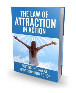 The Law Of Attraction In Action MRR Ebook