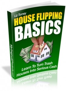 House Flipping Basics Mrr Ebook