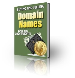 Buying And Selling Domain Names Plr Ebook