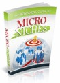 The Beginners Guide To Micro Niches Plr Ebook