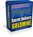 Secret Delivery Goldmine Business Plan PLR Ebook