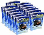 Easy Sales Blueprint PLR Ebook