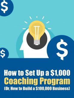 Set Up A Coaching Program PLR Ebook
