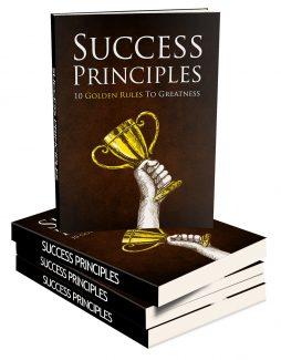 Success Principles MRR Ebook