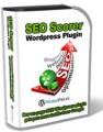 Seo Scorer Wp Plugin Developer License Script