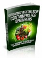 Growing Vegetables In Containers For Beginners Resale ...