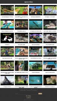Iguanas Instant Mobile Video Site MRR Software