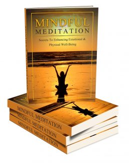Mindful Meditation Mastery MRR Ebook
