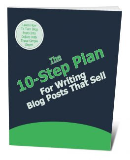 The 10 Step Plan For Writing Blog Posts That Sell PLR Ebook